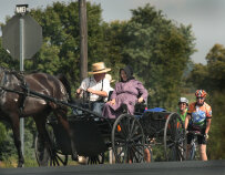 Horse and buggy Pennsylvania Dutch Country Bike Tour