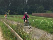Cyclist on bike path during Holland Bike and Barge Bike Tour