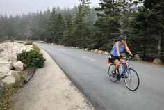 Cyclist on bike path during Maine Acadia National Park Bike Tour