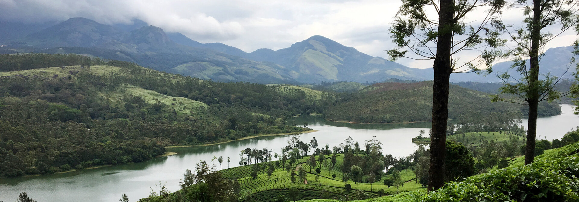 India: Kerala Spice & Tea Gardens