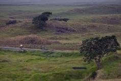 Grass field along bike path Hawaii Bike Tour