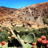 Cats and small village Morocco Bike Tour