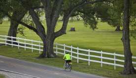 Cyclist on road during Louisiana Bike Tour