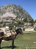 Town and Donkey Albania Bike Tour