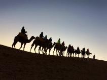 Camel riding Morocco Bike Tour