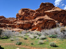 Mojave Desert Tour F