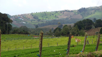 View of Fields Costa Rica Bike Tour