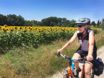 Sunflower field and Cyclist France Bike Tour