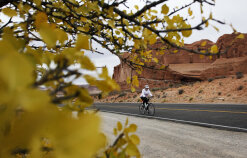 Cyclist on road during Moab Arches and Canyonlands Bike Tour