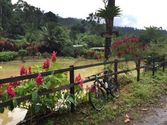 Beautiful pond Costa Rica Bike Tour
