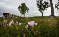 Plant scenery during Louisiana Bike Tour