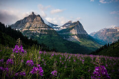 Glacier National Park view