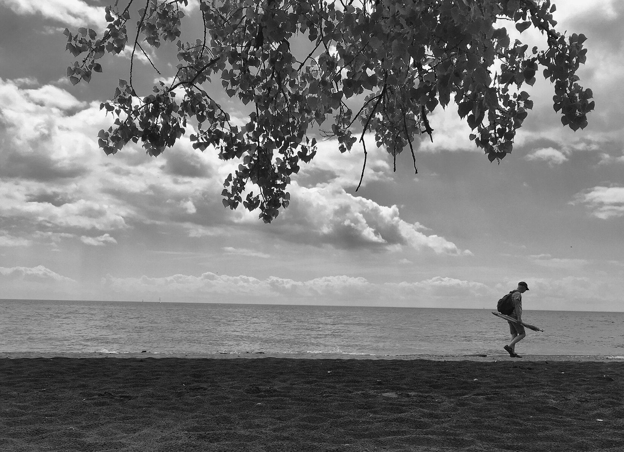 Beachcomber on Lake Ontario in black and white.