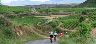 Cyclist on bike path Spain Camino de Santiago bike tour