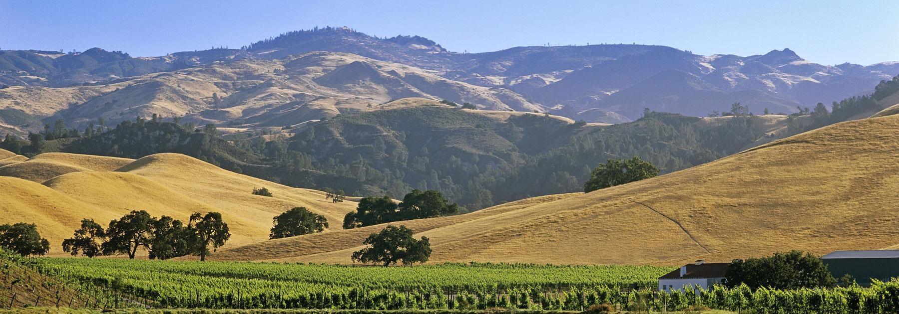 California: Santa Barbara Wine Country